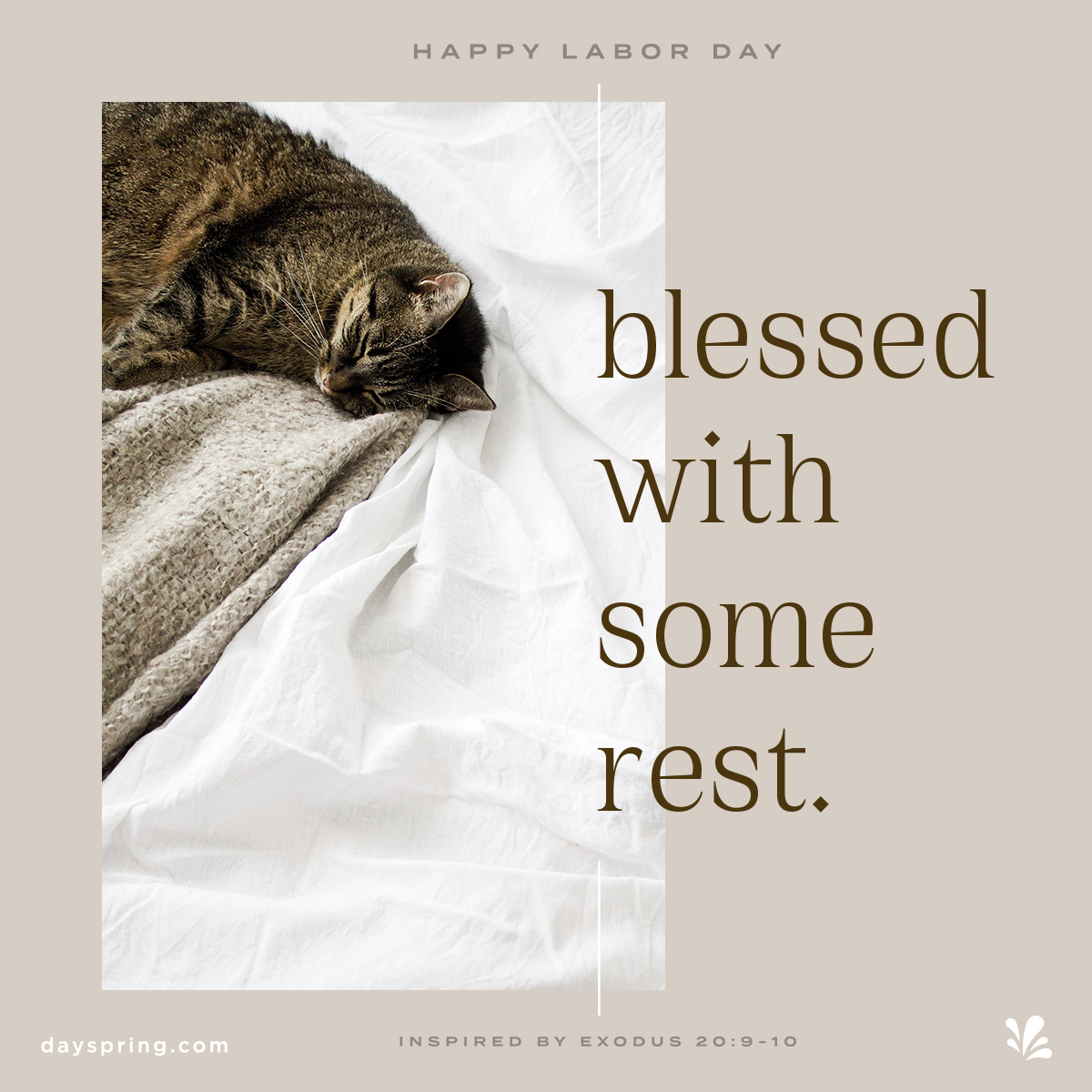 Blessed with Rest