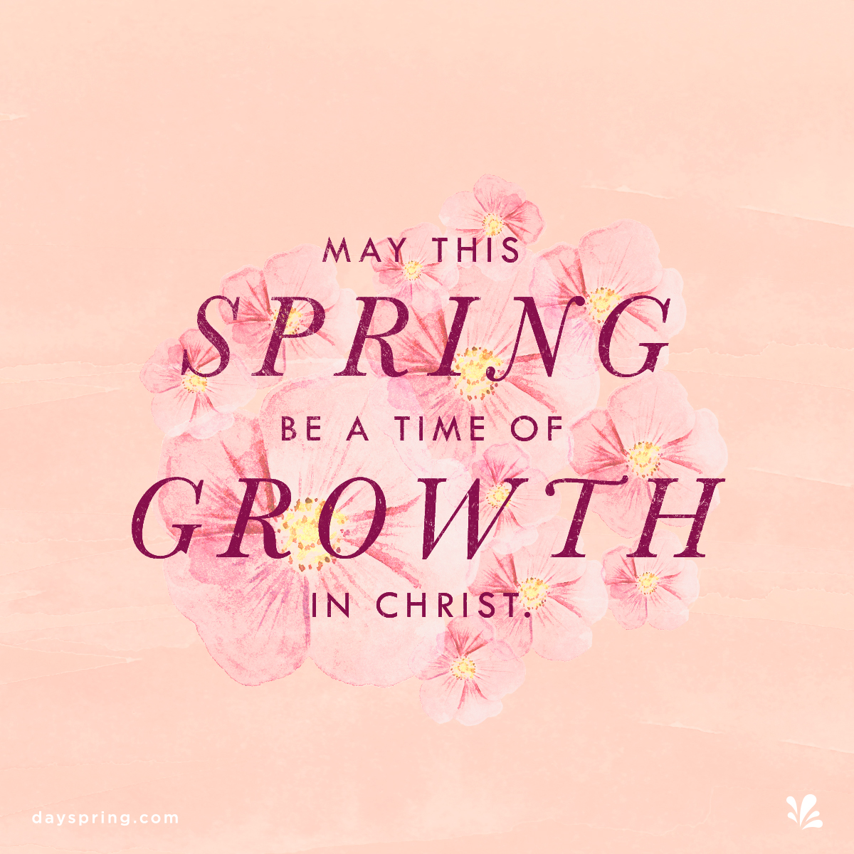 Growth in Christ